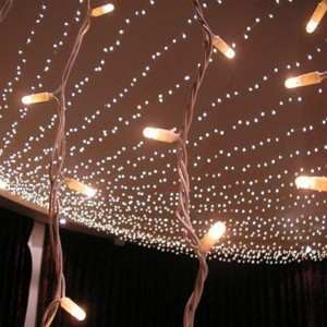 pea lights fairy lights hire